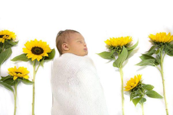 obw-photo-portrait-babies